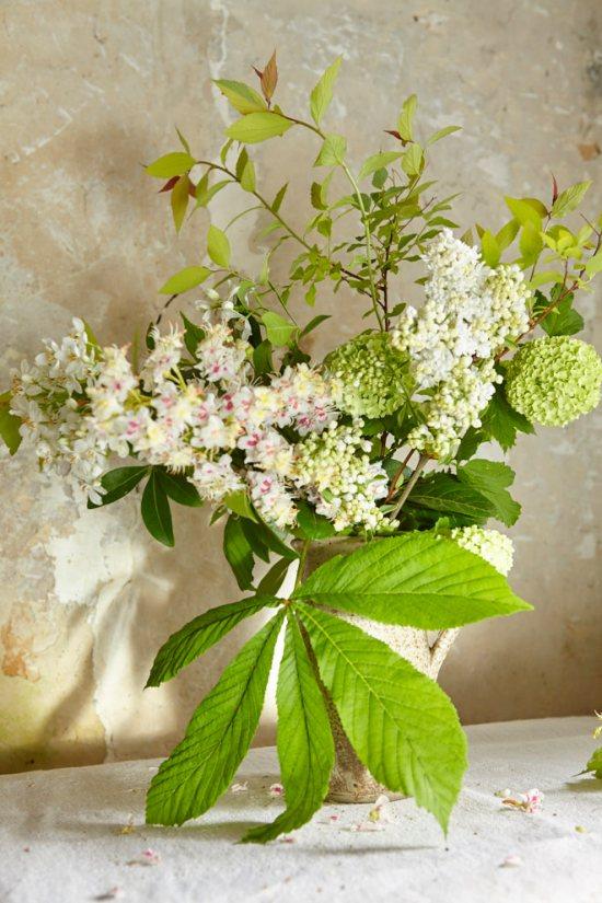fleurs_1362
