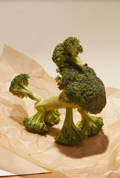 caniche brocoli